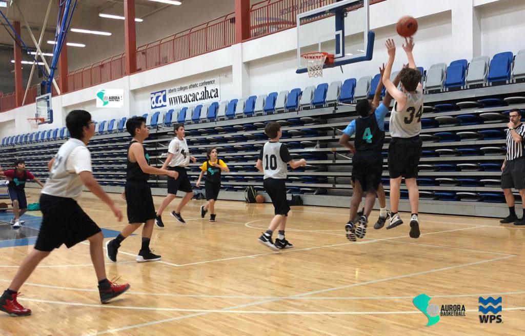 Aurora Basketball